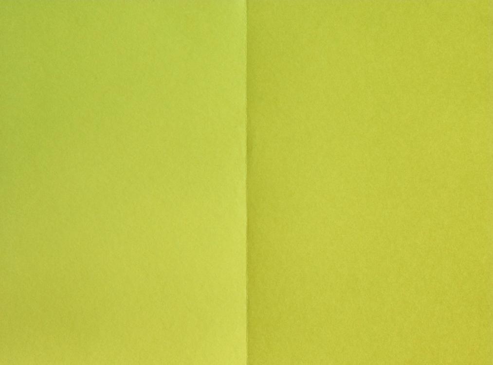 http://eunsunlee.com/files/gimgs/th-23_yellow1-1000.jpg